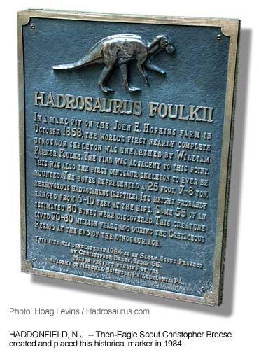 Hadrosaurus Com Official Haddonfield Dinosaur Committee